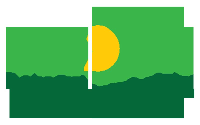 1SDM 一站式榴莲管理公司